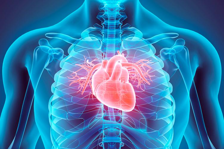 Ateneo de Cardiología - Puesta al día: Prevención Cardiovascular