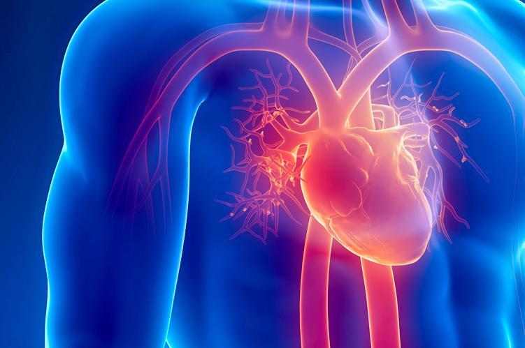 Ateneo de Cardiología - Puesta al día: Terapia de Resincronización Cardíaca (continuación)