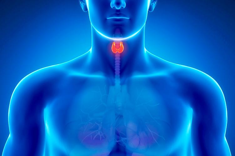 Ateneo de Cardiología - Puesta al día: Enfermedad  Tiroidea asociada  a Enfermedad Cardiovascular