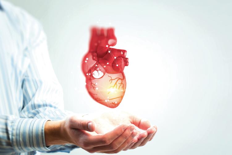 Puesta al día - Nuevas guías en intervención cardiovascular
