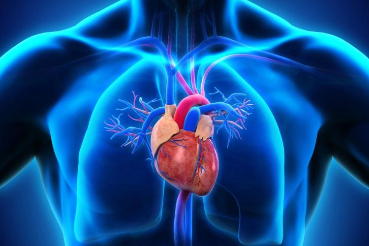 Ateneo Central Online | Hipertensión pulmonar tromboembólica crónica