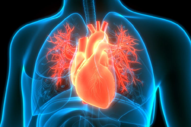 Ateneo Central Online | Radiaciones ionizantes en Cardiología Nuclear. Mitos y realidades