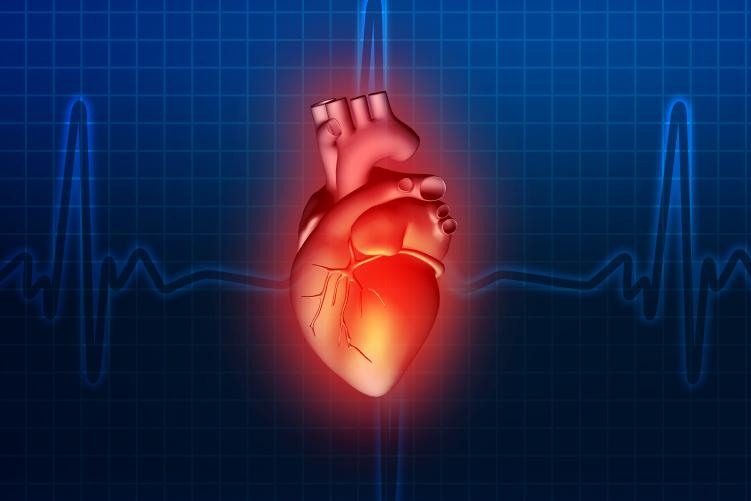 Ateneo Central Online   Recuperación Cardiovascular